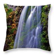 Oregon Falls Throw Pillow
