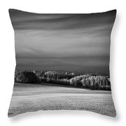 Oregon Field In Infrared Throw Pillow