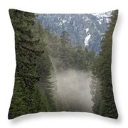 Oregon Highway Mist Throw Pillow