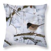 Oregon Junko In Snow Throw Pillow