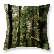 Oregon Old Growth Coastal Forest Throw Pillow