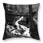 Oregon River Black And White Throw Pillow