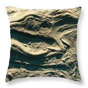 Oregon Sandstone Throw Pillow