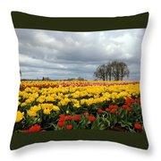 Oregon Tulip Fields 2 Photograph Throw Pillow