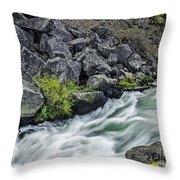 Oregon's Dillon Falls Throw Pillow