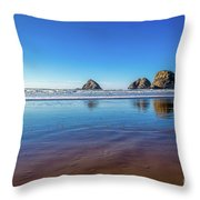 Oregons Rocky Coast Throw Pillow