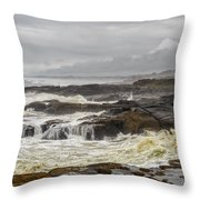 Oregon's Rugged Coast Throw Pillow by Dick Wood