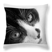 Oreo In Black And White Throw Pillow