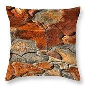 Organic Abstract Throw Pillow