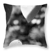 Organic Art Series 3 Throw Pillow