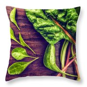 Organic Rainbow Chard Throw Pillow