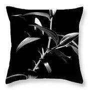 Oriental Lily Two Throw Pillow