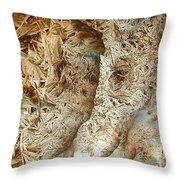 Oriented Strands Throw Pillow