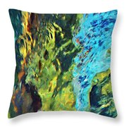 Origins Throw Pillow