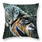 Orinoco Goose  Throw Pillow
