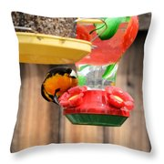 Oriole N Nectar Throw Pillow
