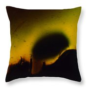 Ormand Throw Pillow