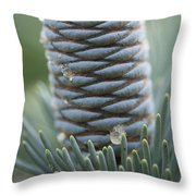 Ornament Of Nature Throw Pillow
