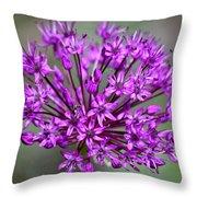 Ornamental Allium Throw Pillow