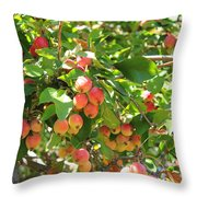Ornamental Apples On A Tree Throw Pillow