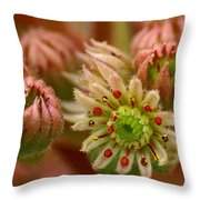 Ornamental Flower Throw Pillow