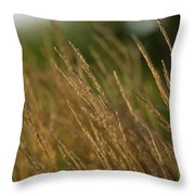 Ornamental Naturally Throw Pillow