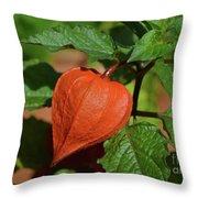 Ornamental Physalis Throw Pillow