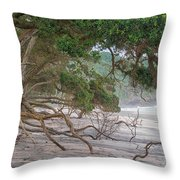 Orokawa Bay Throw Pillow