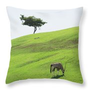 Oryx On Hill Throw Pillow