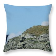 Osborne Bull 2 Throw Pillow