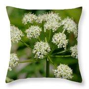 Osha Flowers 1 Throw Pillow