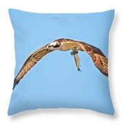Ospre Carrying Lunch Throw Pillow