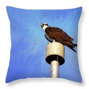 Osprey 1 Throw Pillow