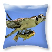 Osprey And Catfish Throw Pillow