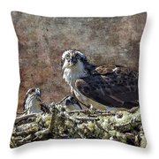Osprey And Young - Feeding Throw Pillow