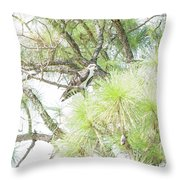 Osprey Applesauce Throw Pillow