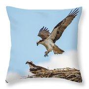 Osprey Approach Throw Pillow