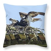 Osprey Family Portrait No. 1 Throw Pillow