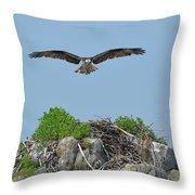 Osprey Flying Over A Bird's Nest Throw Pillow