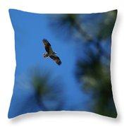 Osprey In Flight 8 Throw Pillow