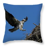 Osprey Landing Approach - Oregon Coast Throw Pillow