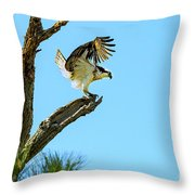 Osprey Landing Throw Pillow