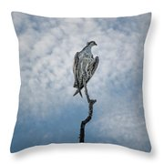 Osprey On Top Of The World Throw Pillow