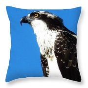 Osprey Profile Throw Pillow