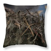 Osprey Protecting The Nest Throw Pillow