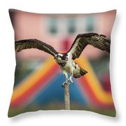 Osprey Salutes The Busch Eagle Throw Pillow