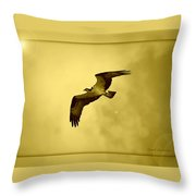 Osprey Soaring Into Golden Sunlight Throw Pillow