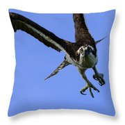 Osprey Takeoff Throw Pillow