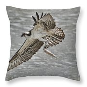 Osprey With Breakfast Throw Pillow