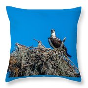 Osprey With Chicks Throw Pillow